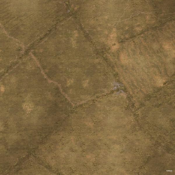 Eine Tabletop Battle Mat im Felder Design.